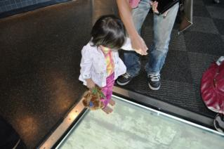 First step on Glass floor
