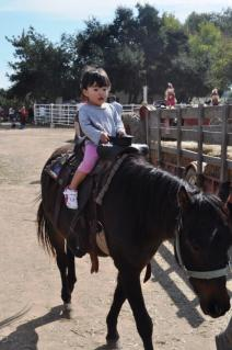 her first horse riding