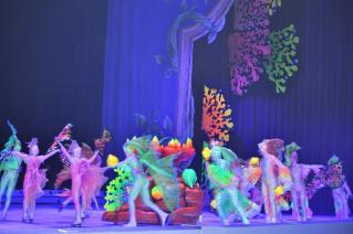Ariel's world