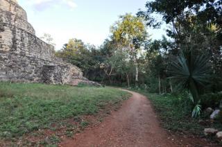ジャングルの中にふつと浮かぶ遺跡