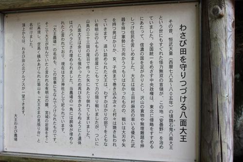 20100830_26.jpg