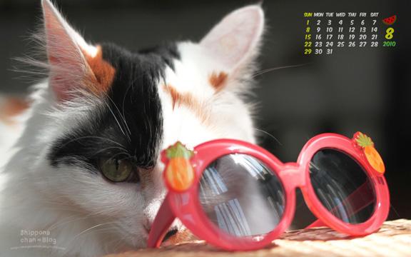 しっぽなちゃんカレンダー8月