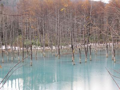青い池 11.5