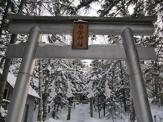 白金神社。