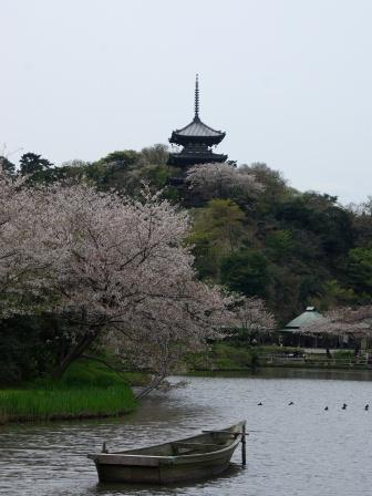 桜と三重の塔