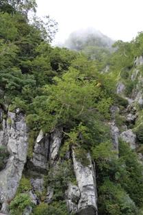 大観峰周辺の岩山