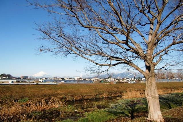 冬晴れの丹沢山脈と富士山