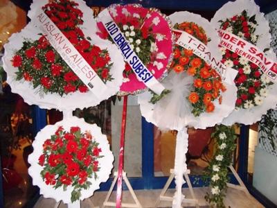 DSCF0567花