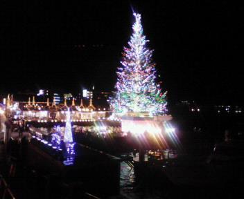 函館クリスマスツリー