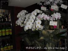 0510-3薫ちゃん