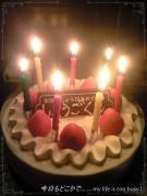 0625-3シュ~の誕生日