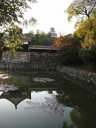 2009/11/23高知城1