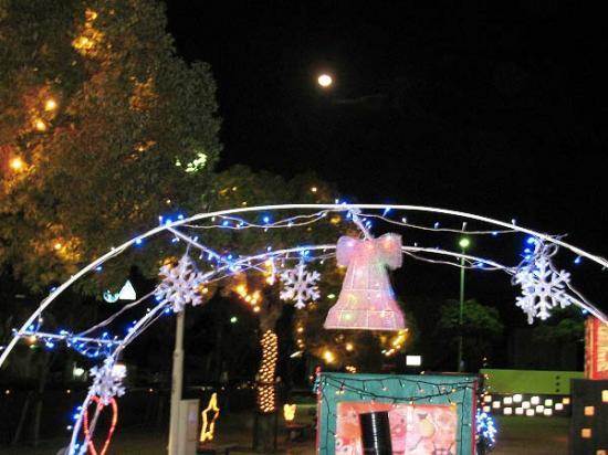 2009/12/05坂出クリスマスイルミ7