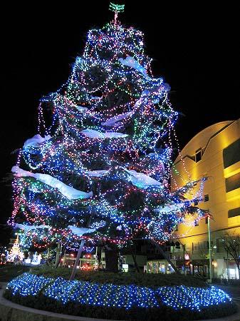 2009/12/05坂出クリスマスイルミ3