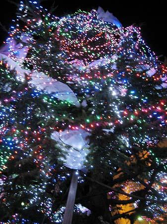 2009/12/05坂出クリスマスイルミ4