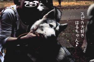 05.20ヨヨコー5