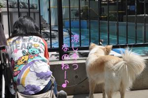 05.28動物園6
