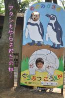05.28動物園3