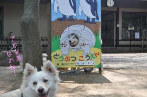 05.28動物園1