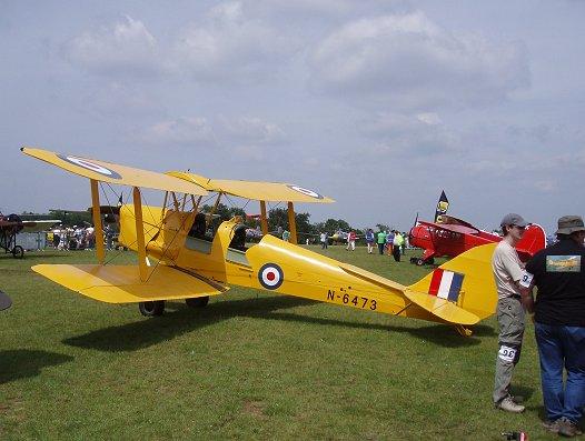黄色のTiger Moth REVdownsize