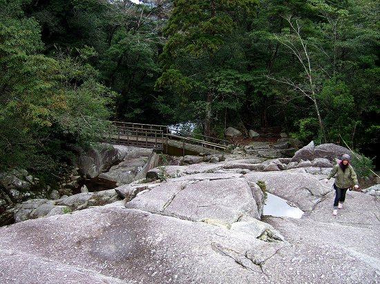 20100105-1.jpg