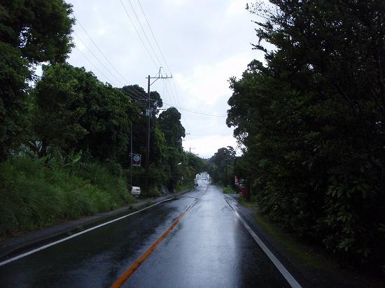 20100506-1.jpg