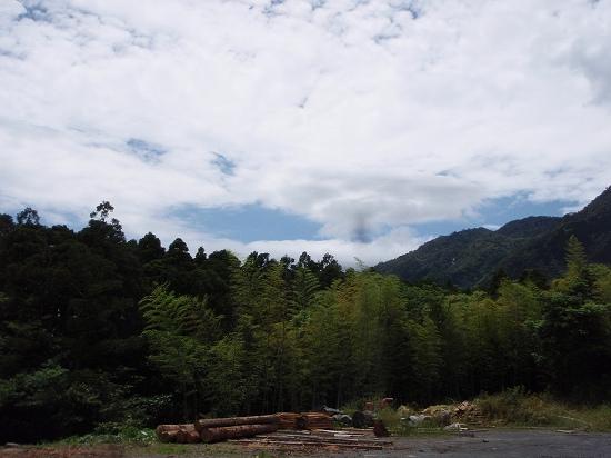 20100506-2.jpg
