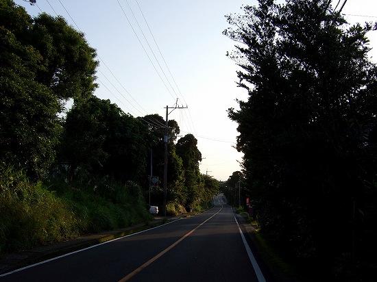 20100508.jpg