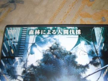 ju-DSCF0792.jpg