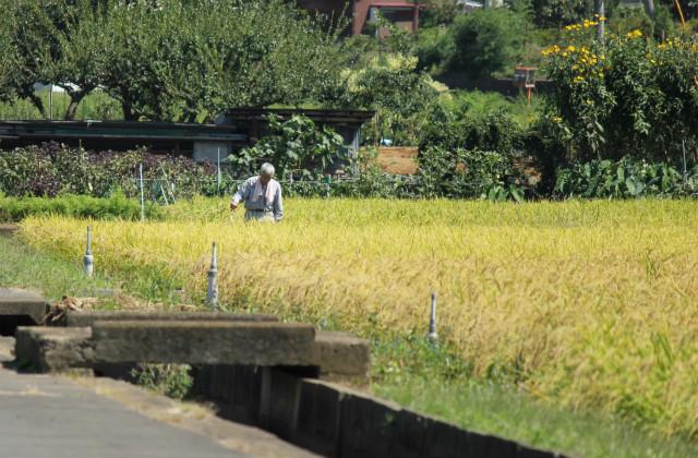 kuridaira13-9_082.jpg