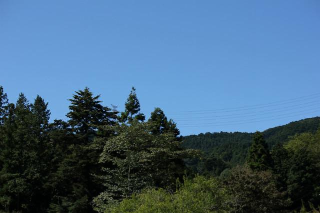 taka-13-9_003.jpg