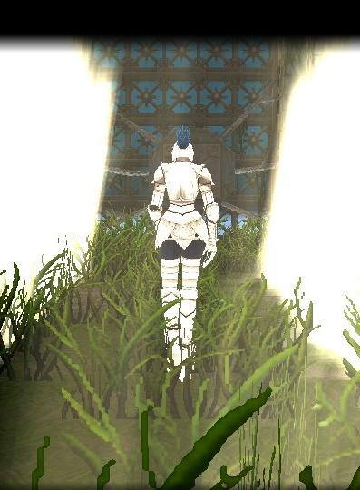 mabinogi_2010_06_14_008.jpg