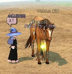 mabinogi_2010_08_23_007.jpg