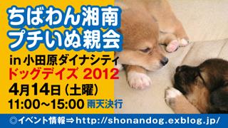 inuoyakai_odawara20120414_320x180.jpg