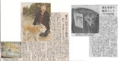 2011-3-23岩手日報f
