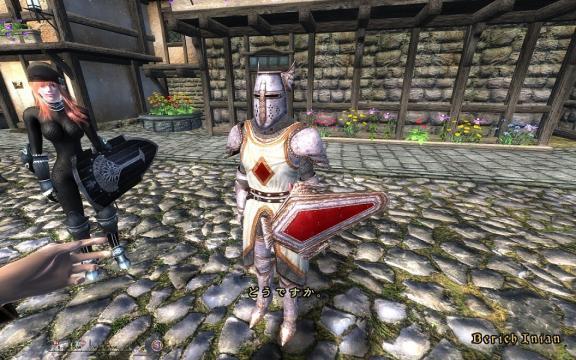 Oblivion 2010-01-20 16-31-03-97