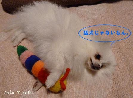ne_20110427214517.jpg