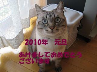 s-IMG_1076.jpg