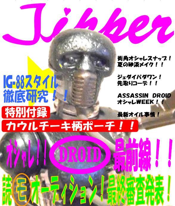 jipper1.jpg