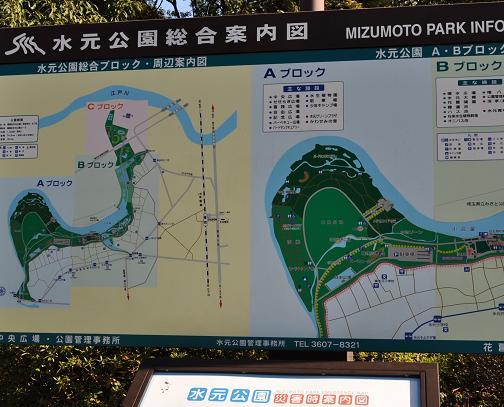 水元公園1