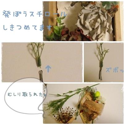 mosa2.jpg
