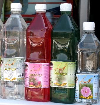 iran2010-2-11.jpg