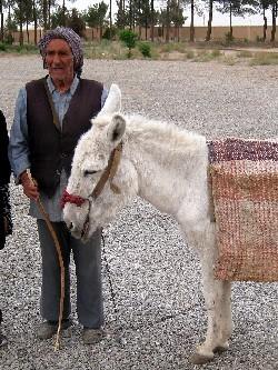 iran2010-4-2.jpg