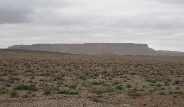 iran2010-5-2.jpg