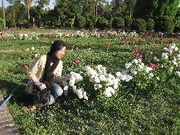 iran2010-6-46.jpg