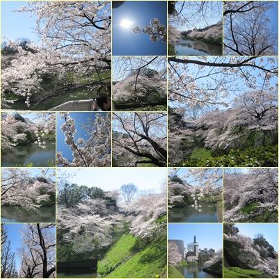 sakuramix3.jpg