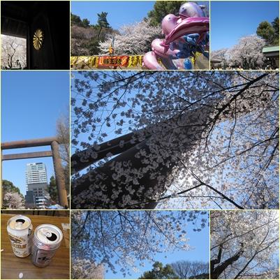 sakuramix5.jpg