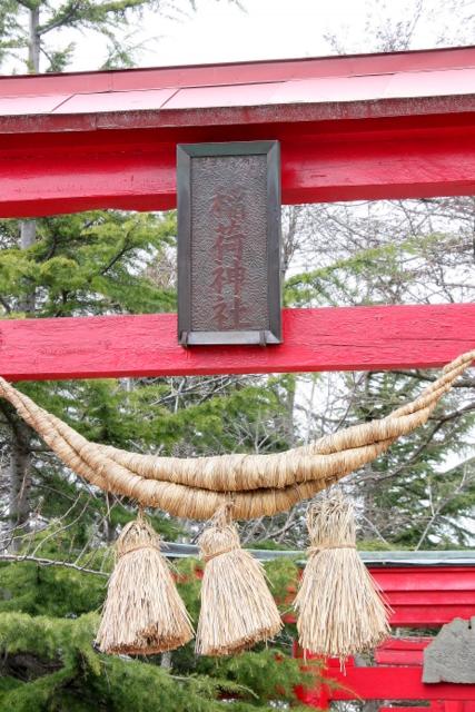 水芭蕉 青森市原別 稲荷神社