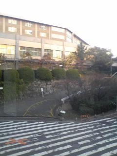 N大農学部vv