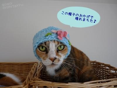 帽子のおかげ